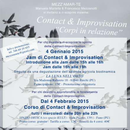 contact_improvisation_gen_2015